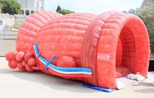 La prostate géante mesure 3m de haut par 5m de long